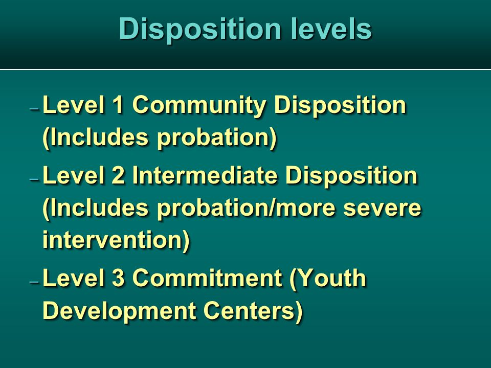 Disposition levels – Level 1 Community Disposition (Includes probation) – Level 2 Intermediate Disposition (Includes probation/more severe intervention) – Level 3 Commitment (Youth Development Centers) – Level 1 Community Disposition (Includes probation) – Level 2 Intermediate Disposition (Includes probation/more severe intervention) – Level 3 Commitment (Youth Development Centers)