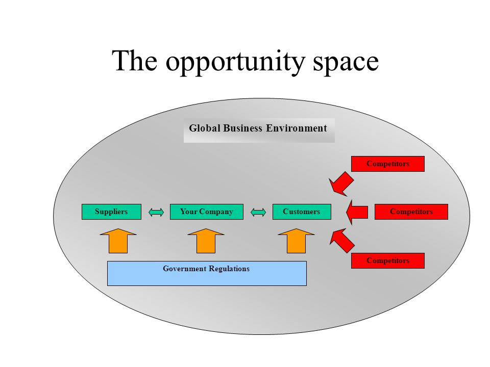 The opportunity space Global Business Environment CustomersYour CompanySuppliers Government Regulations Competitors