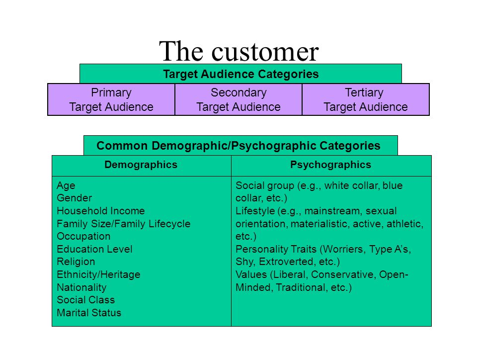The customer Social group (e.g., white collar, blue collar, etc.) Lifestyle (e.g., mainstream, sexual orientation, materialistic, active, athletic, etc.) Personality Traits (Worriers, Type A's, Shy, Extroverted, etc.) Values (Liberal, Conservative, Open- Minded, Traditional, etc.) Age Gender Household Income Family Size/Family Lifecycle Occupation Education Level Religion Ethnicity/Heritage Nationality Social Class Marital Status PsychographicsDemographics Common Demographic/Psychographic Categories Target Audience Categories Primary Target Audience Secondary Target Audience Tertiary Target Audience