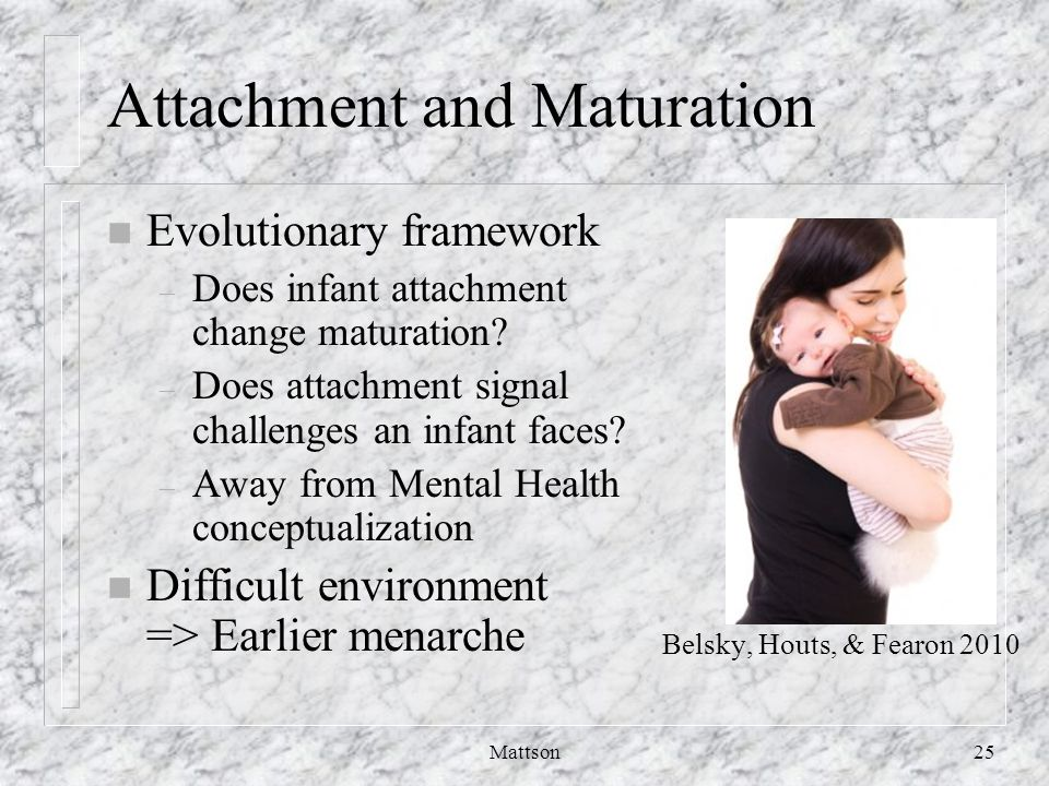 Attachment and Maturation n Evolutionary framework – Does infant attachment change maturation.