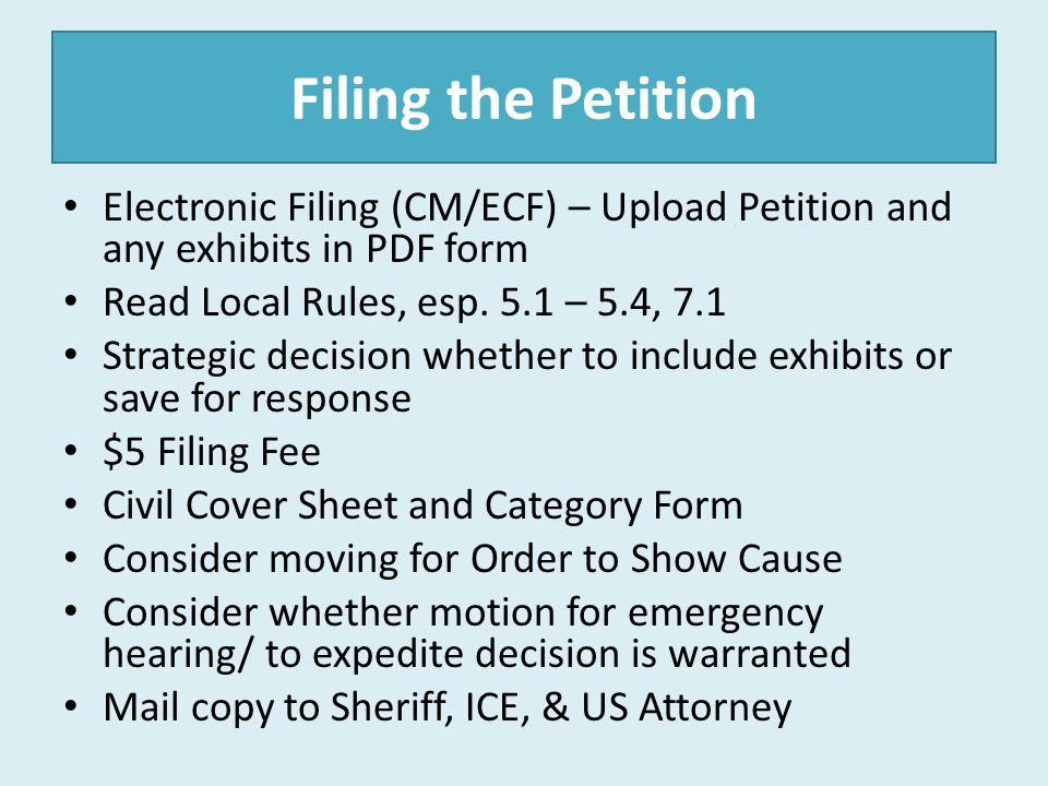 Filing the Petition Electronic Filing (CM/ECF) – Upload Petition and any exhibits in PDF form Read Local Rules, esp. 5.1 – 5.4, 7.1 Strategic decision