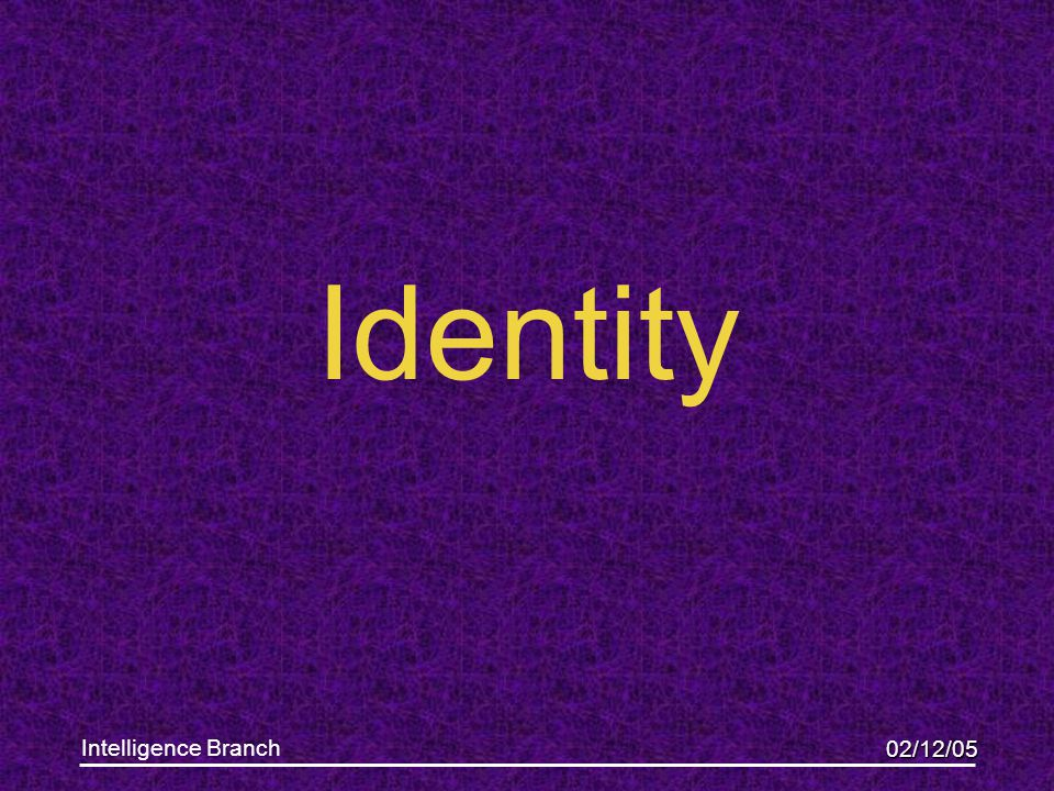 02/12/05 Intelligence Branch Identity