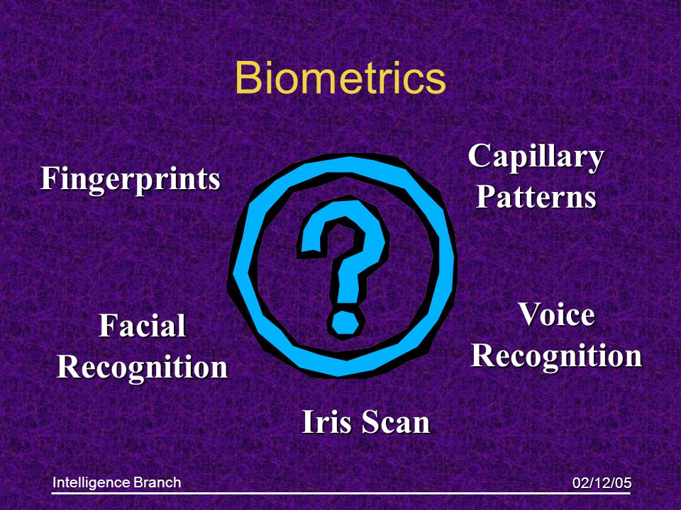 02/12/05 Intelligence Branch Biometrics Fingerprints Iris Scan Voice Recognition Capillary Patterns Facial Recognition