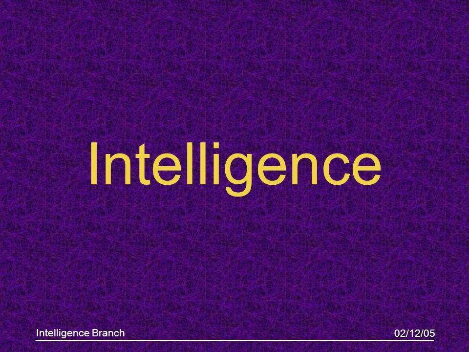 02/12/05 Intelligence Branch Intelligence