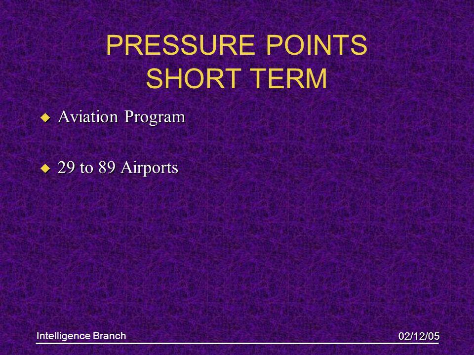 02/12/05 Intelligence Branch PRESSURE POINTS SHORT TERM u Aviation Program u 29 to 89 Airports