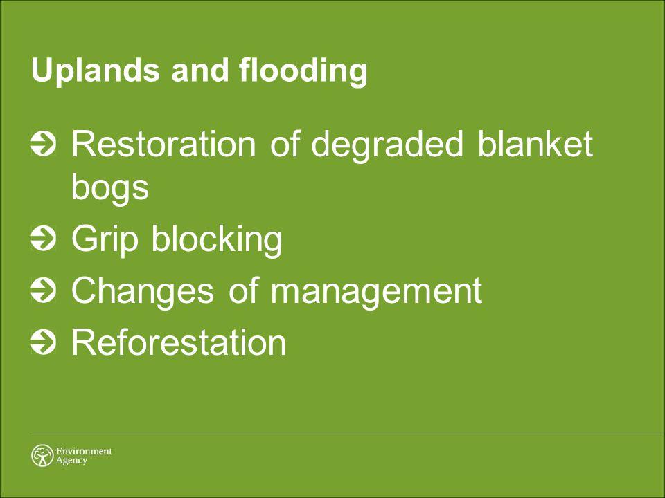 Uplands and flooding Restoration of degraded blanket bogs Grip blocking Changes of management Reforestation