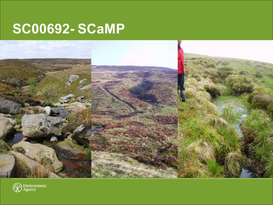 SC00692- SCaMP
