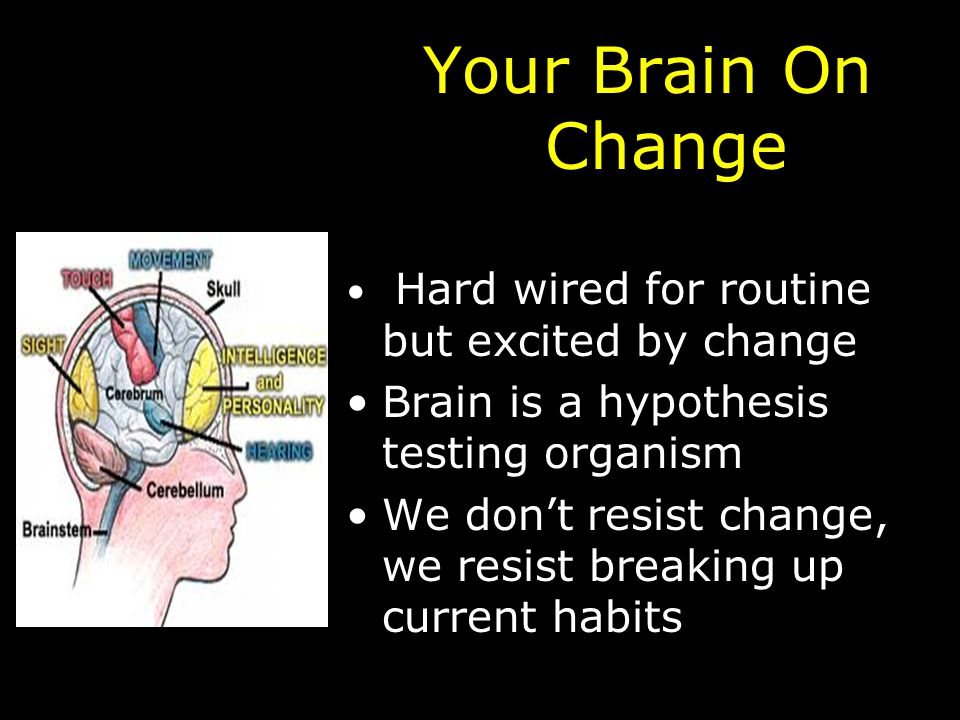 Your Brain On Change Hard wired for routine but excited by change Brain is a hypothesis testing organism We don't resist change, we resist breaking up current habits