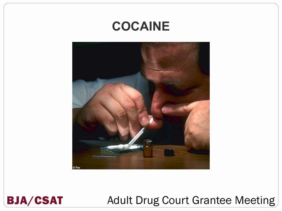 Novocaine, Lidocaine, Xylocaine