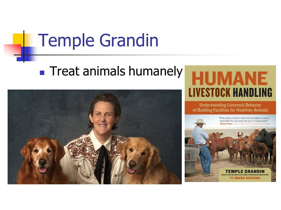 Temple Grandin Treat animals humanely