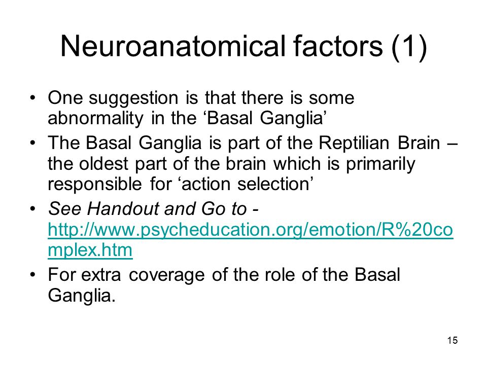 15 Neuroanatomical factors (1) One suggestion is that there is some abnormality in the 'Basal Ganglia' The Basal Ganglia is part of the Reptilian Brai