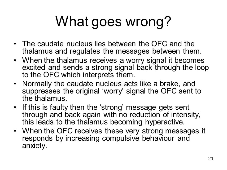 21 What goes wrong? The caudate nucleus lies between the OFC and the thalamus and regulates the messages between them. When the thalamus receives a wo