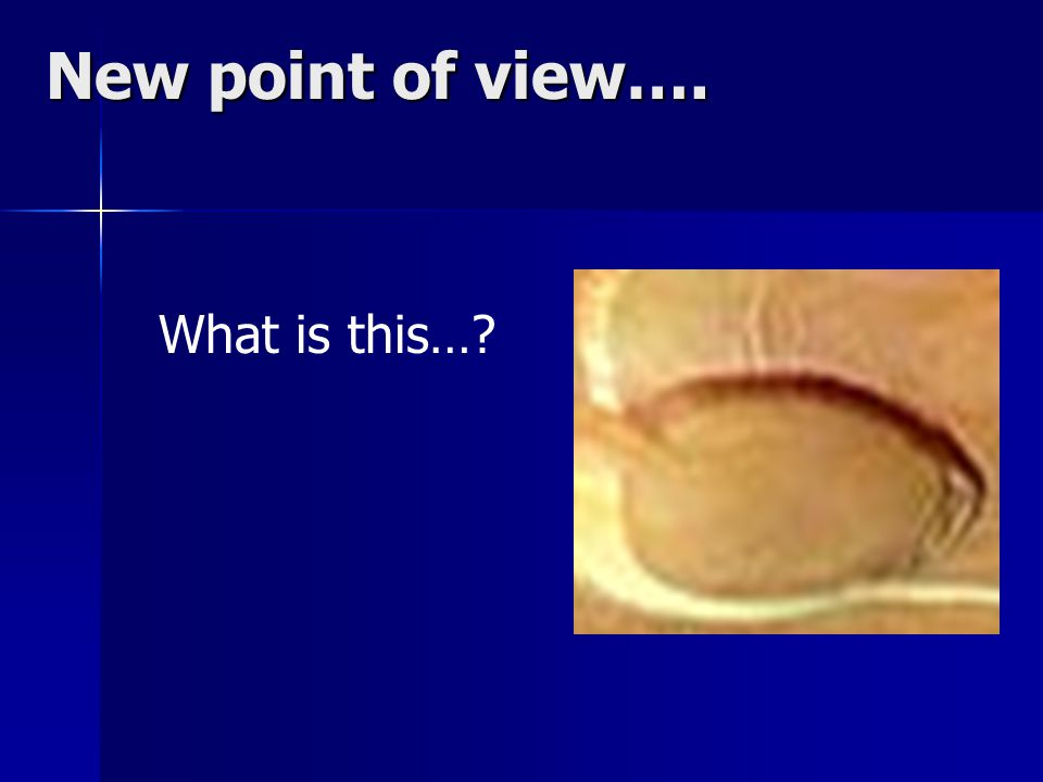 New point of view…. What is this…