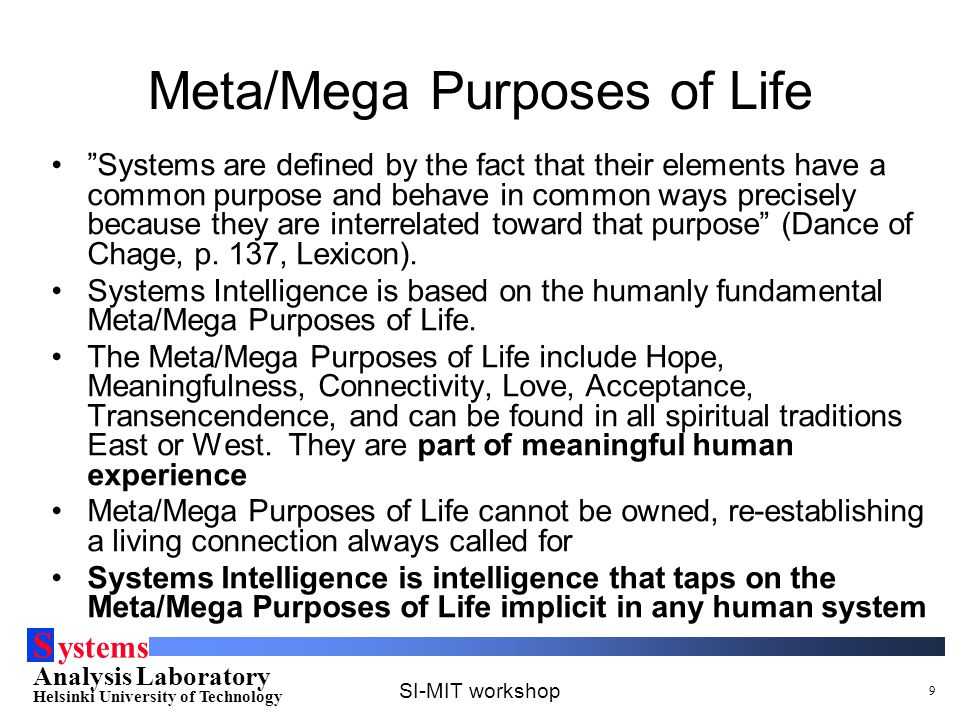 S ystems Analysis Laboratory Helsinki University of Technology SI-MIT workshop 9 Meta/Mega Purposes of Life Systems are defined by the fact that their elements have a common purpose and behave in common ways precisely because they are interrelated toward that purpose (Dance of Chage, p.
