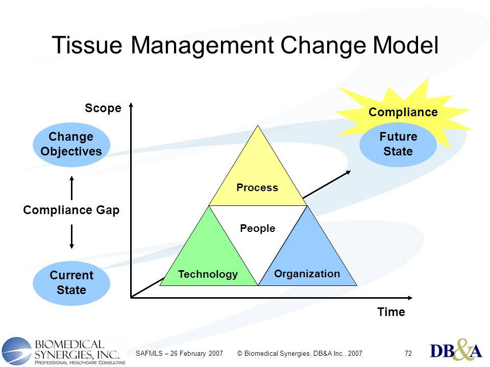 & DBA & DBA & DBA SAFMLS – 26 February 2007 © Biomedical Synergies, DB&A Inc., 200772 Tissue Management Change Model Process People Technology Organization Scope Time Current State Change Objectives Compliance Gap Future State Compliance