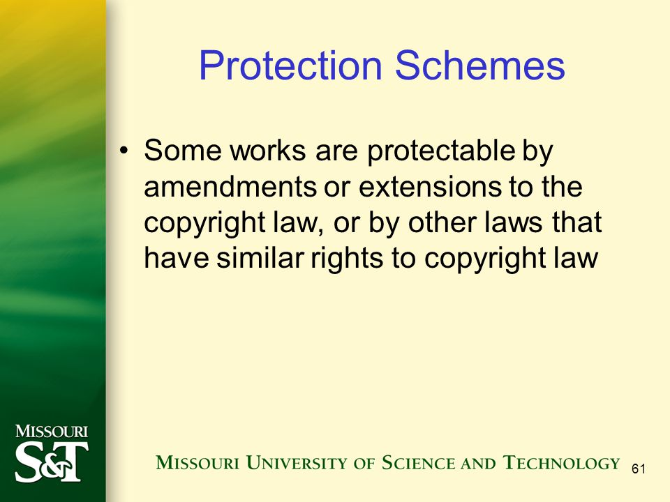 Protection Schemes Some works are protectable by amendments or extensions to the copyright law, or by other laws that have similar rights to copyright
