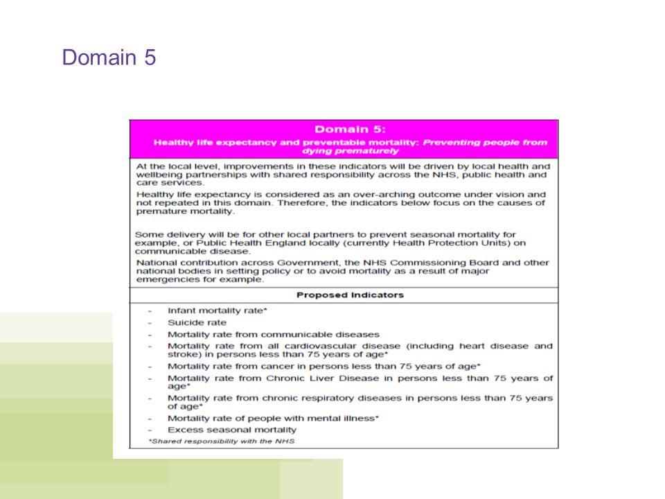 Domain 5