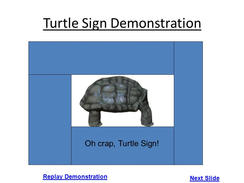 Turtle Sign Demonstration Replay Demonstration Next Slide Oh crap, Turtle Sign!