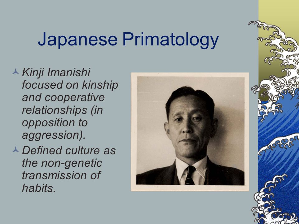 Japanese Primatology Kinji Imanishi focused on kinship and cooperative relationships (in opposition to aggression).