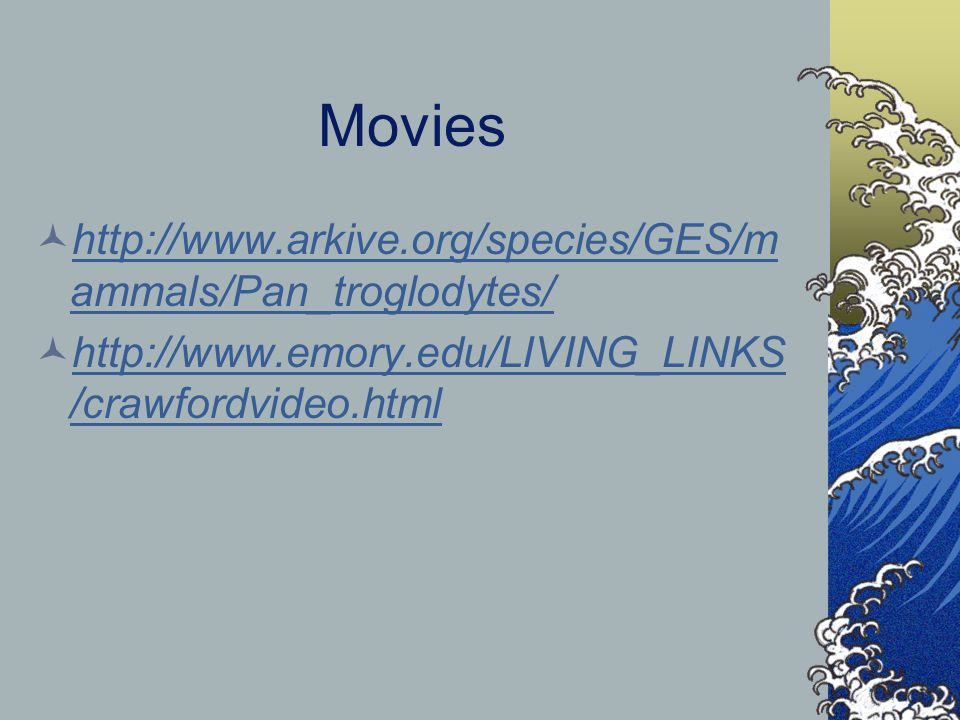 Movies http://www.arkive.org/species/GES/m ammals/Pan_troglodytes/ http://www.arkive.org/species/GES/m ammals/Pan_troglodytes/ http://www.emory.edu/LIVING_LINKS /crawfordvideo.html http://www.emory.edu/LIVING_LINKS /crawfordvideo.html