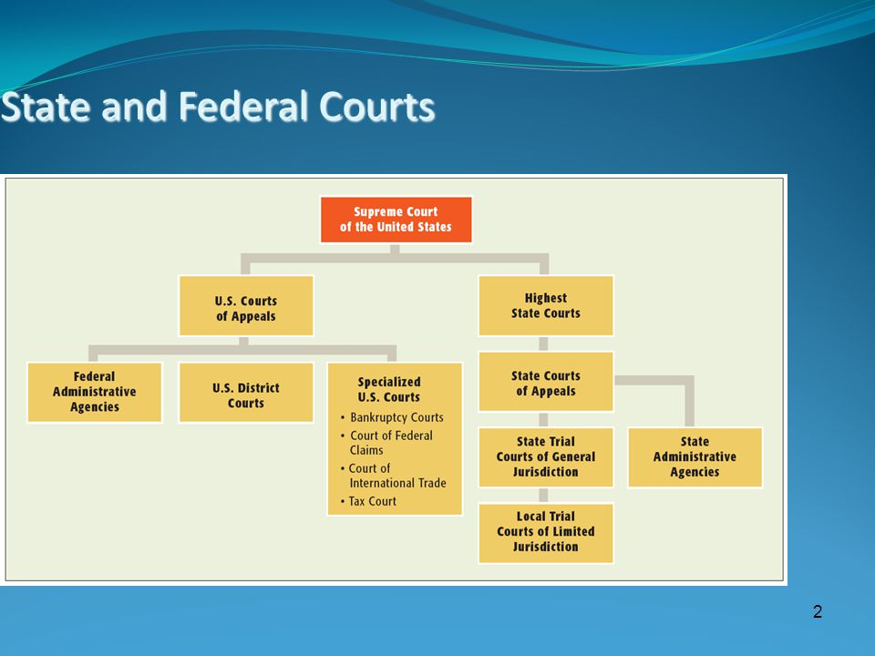2 State and Federal Courts