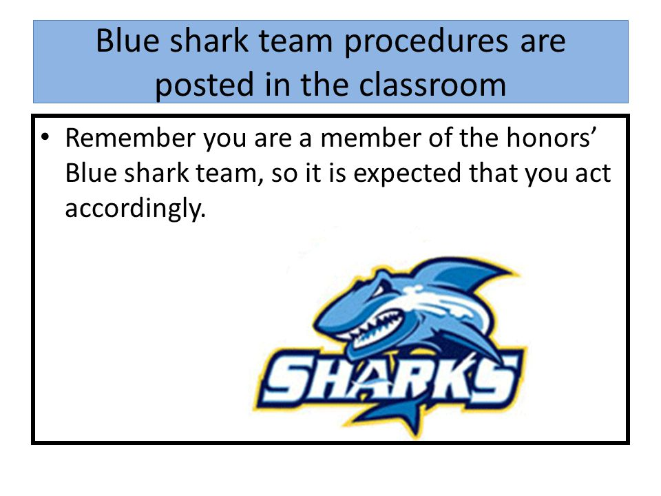 Blue shark team procedures are posted in the classroom Remember you are a member of the honors' Blue shark team, so it is expected that you act accordingly.