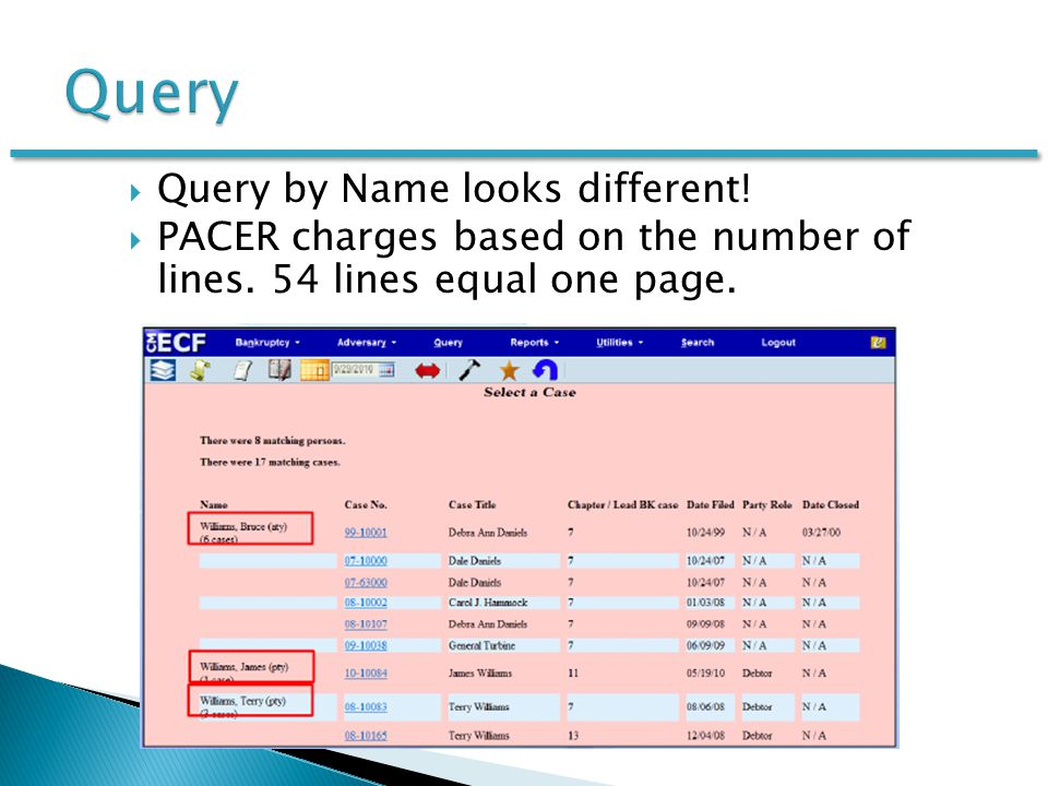  Query by Name looks different.  PACER charges based on the number of lines.
