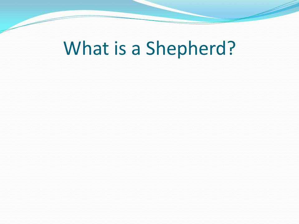What is a Shepherd