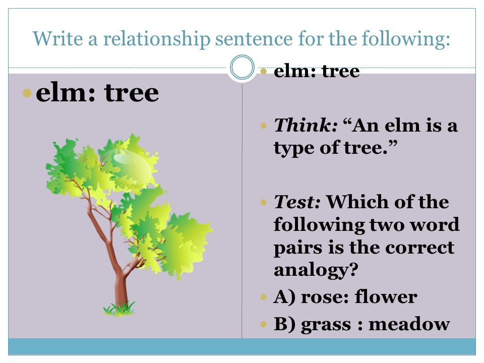Write a relationship sentence for the following: elm: tree Think: An elm is a type of tree. Test: Which of the following two word pairs is the correct analogy.