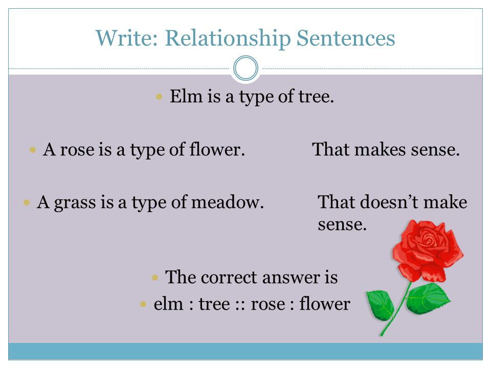 Write: Relationship Sentences Elm is a type of tree.