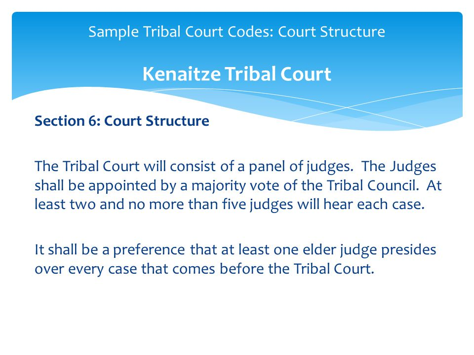 Section 6: Court Structure The Tribal Court will consist of a panel of judges.