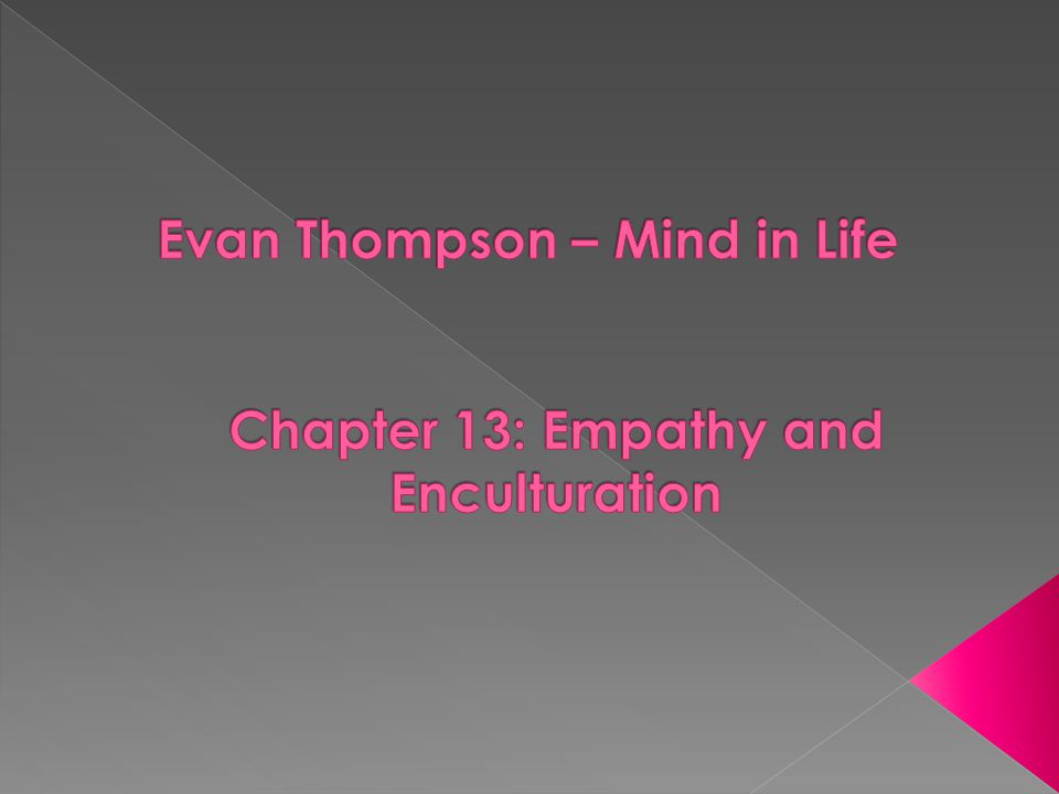 B) The Phenomenological Concept of Empathy (pp.