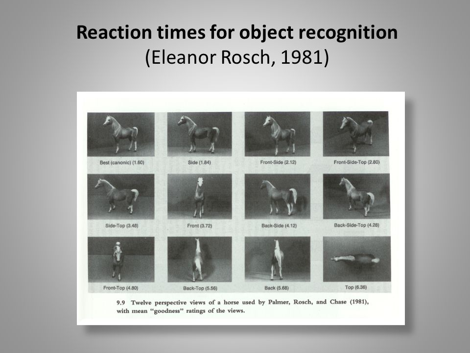 Reaction times for object recognition (Eleanor Rosch, 1981)