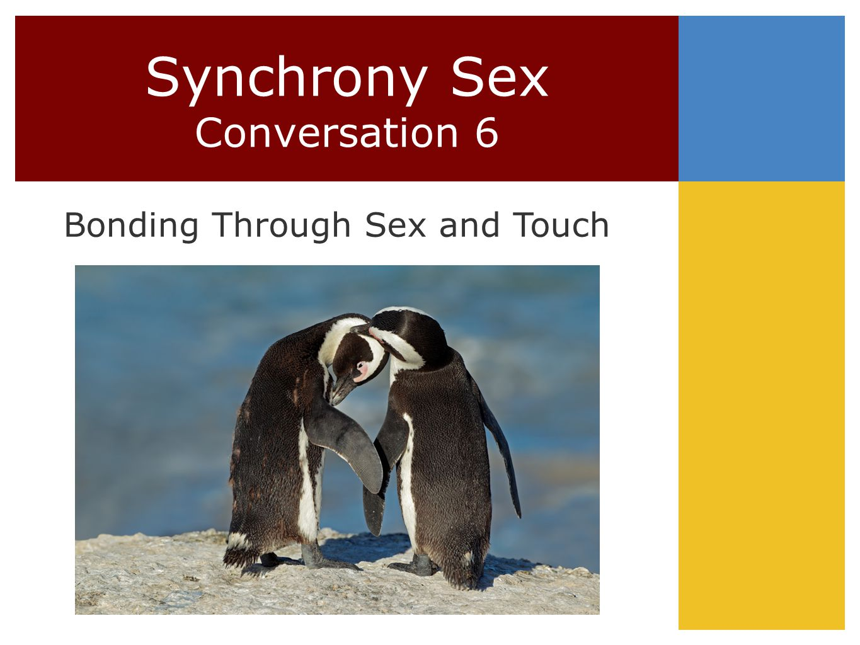 Synchrony Sex Conversation 6 Bonding Through Sex and Touch © Sue Johnson 2010