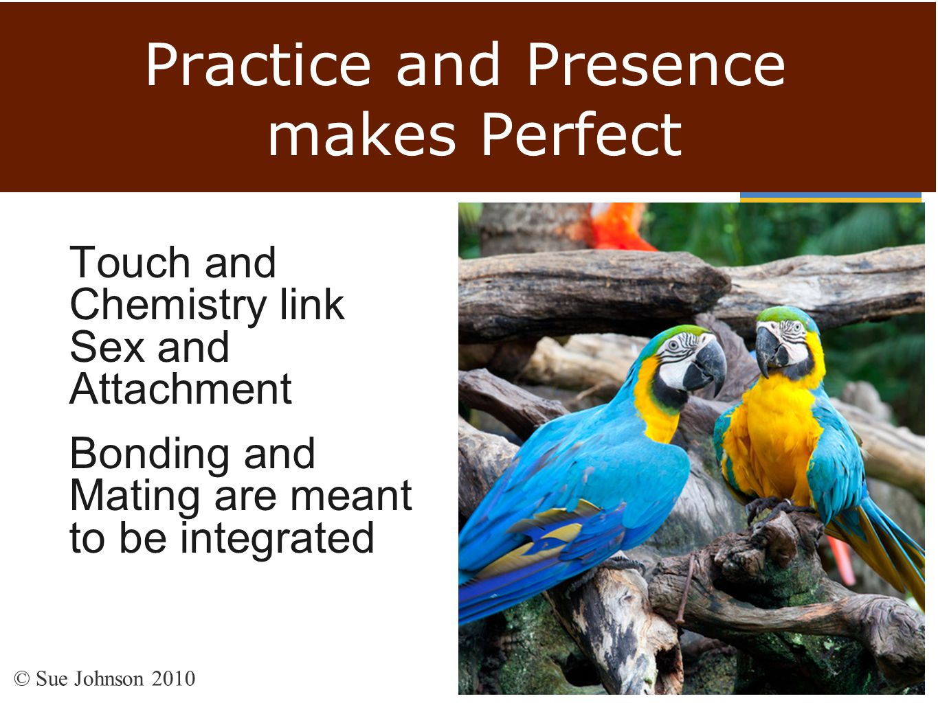 Practice and Presence makes Perfect Touch and Chemistry link Sex and Attachment Bonding and Mating are meant to be integrated © Sue Johnson 2010