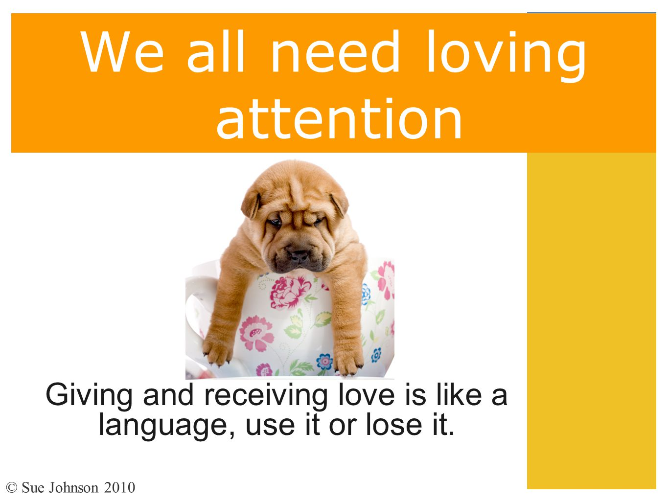 We all need loving attention Giving and receiving love is like a language, use it or lose it. © Sue Johnson 2010
