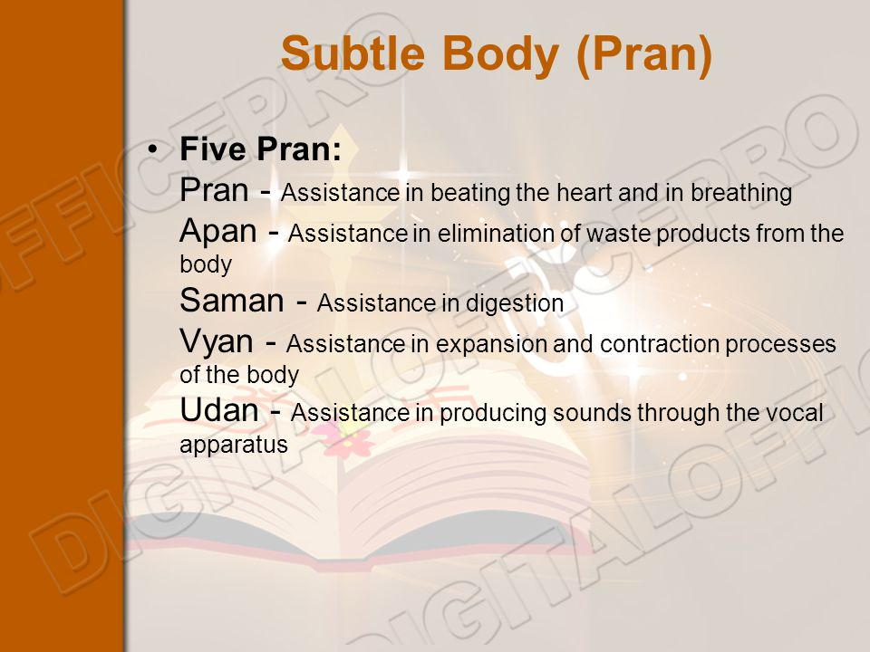 Subtle Body (Pran) Five Pran: Pran - Assistance in beating the heart and in breathing Apan - Assistance in elimination of waste products from the body Saman - Assistance in digestion Vyan - Assistance in expansion and contraction processes of the body Udan - Assistance in producing sounds through the vocal apparatus