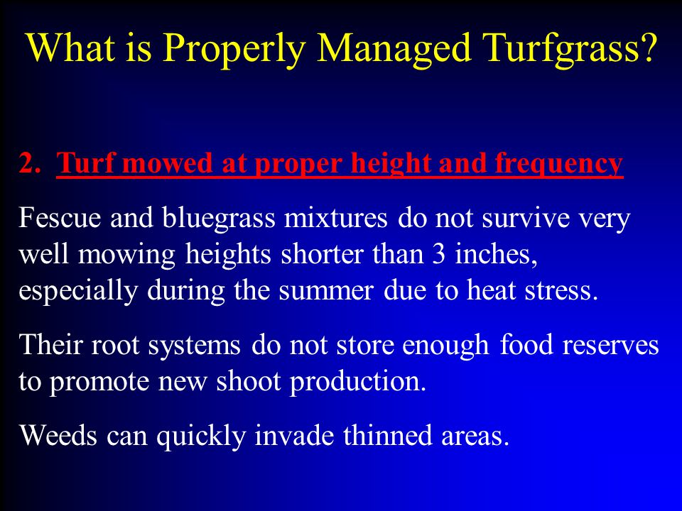 What is Properly Managed Turfgrass.2.