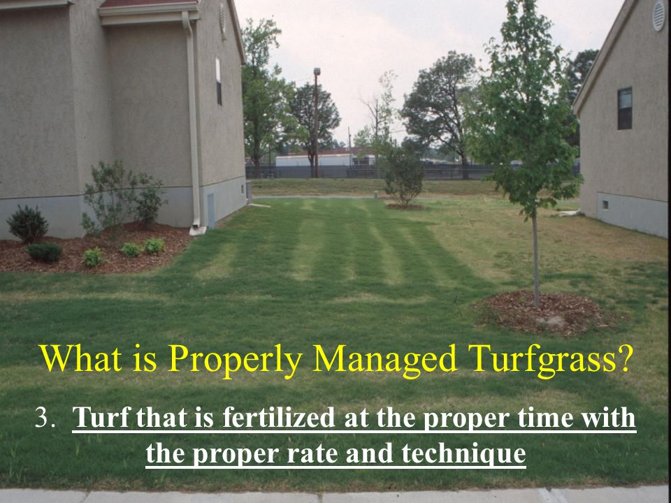 What is Properly Managed Turfgrass.3.