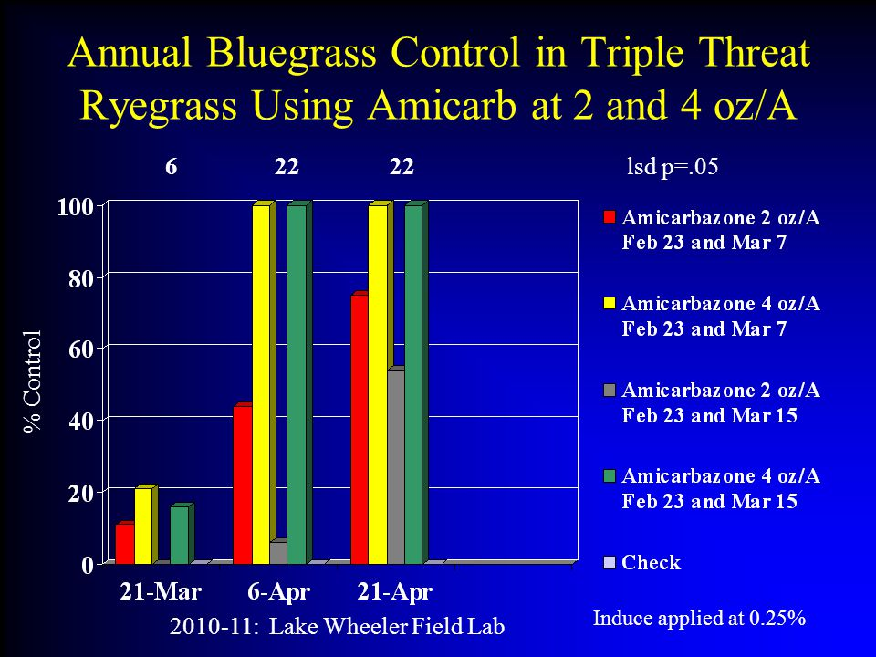 Annual Bluegrass Control in Triple Threat Ryegrass Using Amicarb at 2 and 4 oz/A % Control 2010-11: Lake Wheeler Field Lab 6 22 22 lsd p=.05 Induce applied at 0.25%