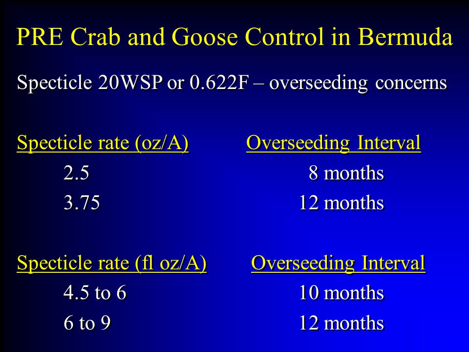 PRE Crab and Goose Control in Bermuda Specticle 20WSP or 0.622F – overseeding concerns Specticle rate (oz/A) Overseeding Interval 2.5 8 months 3.7512 months Specticle rate (fl oz/A)Overseeding Interval 4.5 to 610 months 6 to 912 months Specticle 20WSP or 0.622F – overseeding concerns Specticle rate (oz/A) Overseeding Interval 2.5 8 months 3.7512 months Specticle rate (fl oz/A)Overseeding Interval 4.5 to 610 months 6 to 912 months