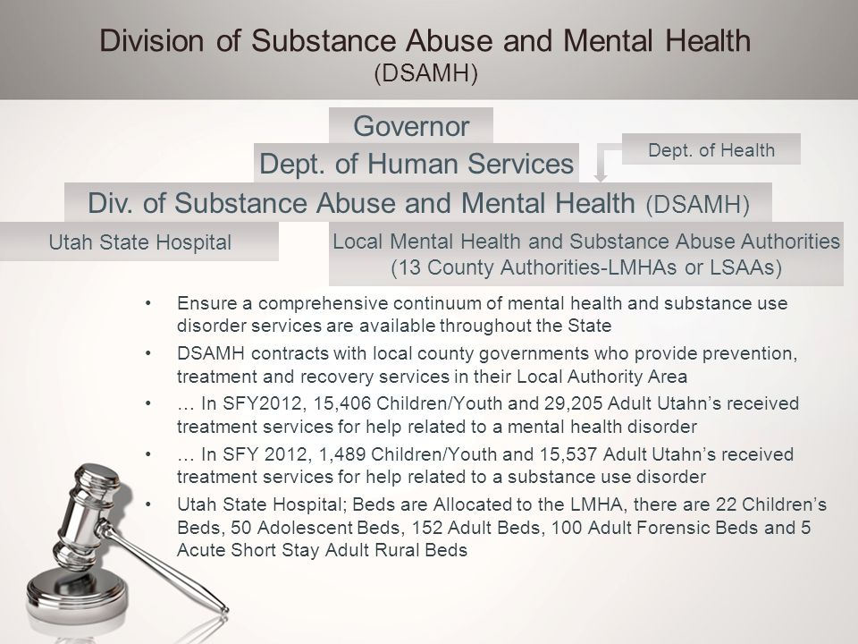 Division of Substance Abuse and Mental Health (DSAMH) Ensure a comprehensive continuum of mental health and substance use disorder services are availa