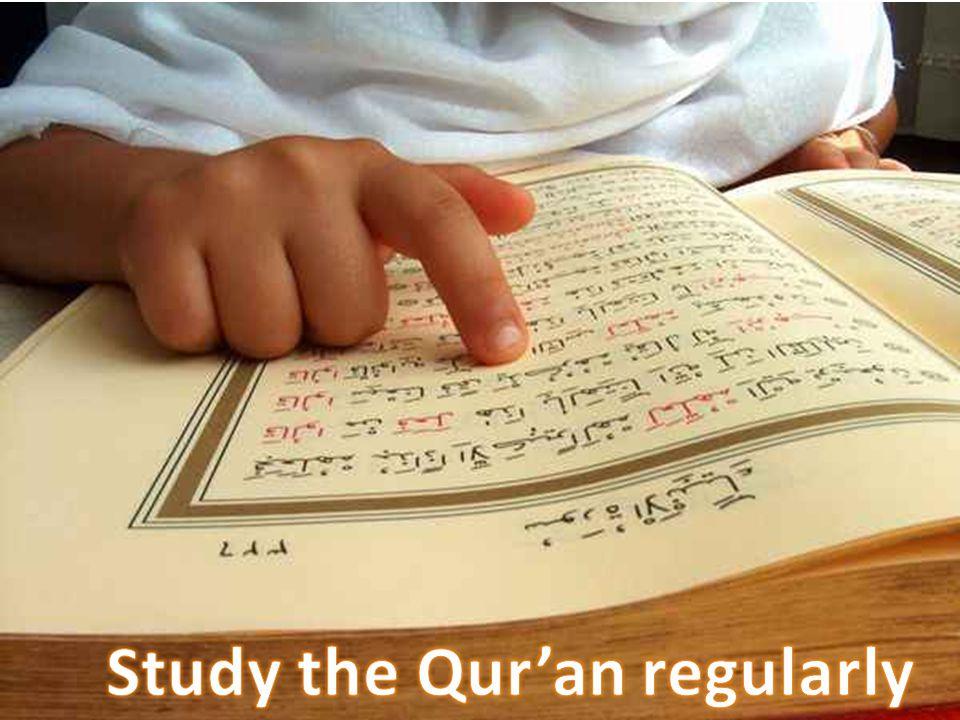 Study Quran regular