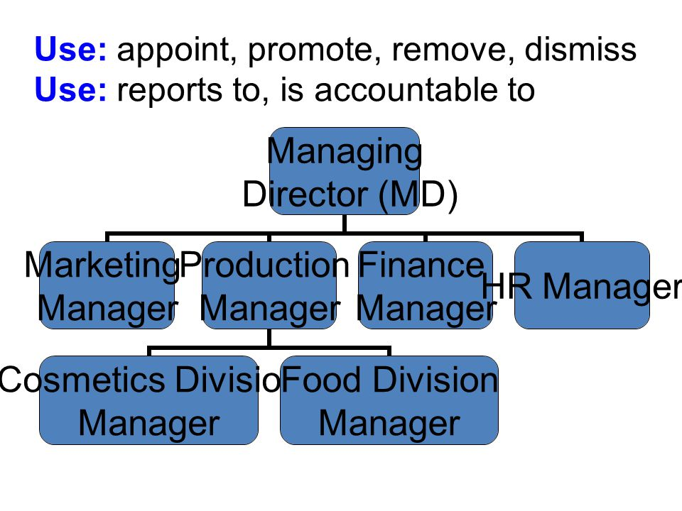Use: appoint, promote, remove, dismiss Use: reports to, is accountable to Managing Director (MD) Marketing Manager Production Manager Cosmetics Division Manager Food Division Manager Finance Manager HR Manager