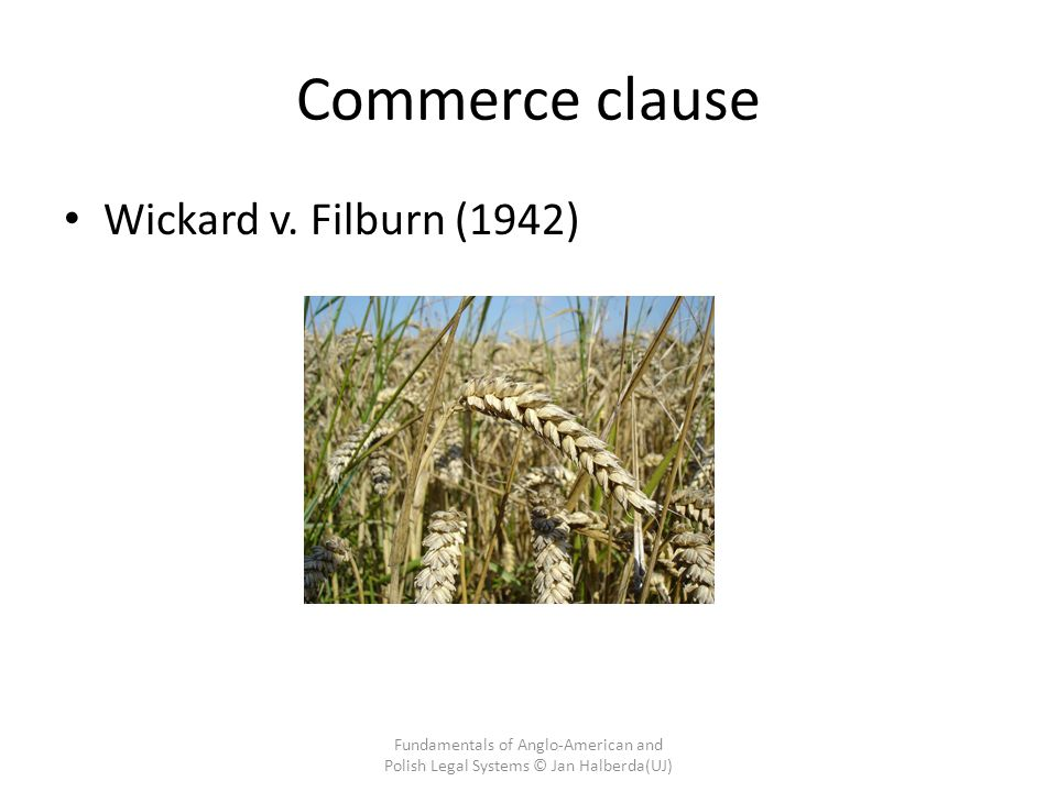 Commerce clause Wickard v.