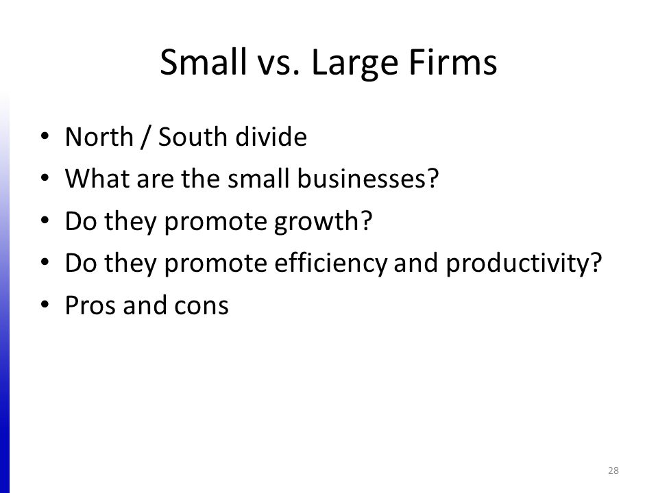 Small vs. Large Firms North / South divide What are the small businesses? Do they promote growth? Do they promote efficiency and productivity? Pros an