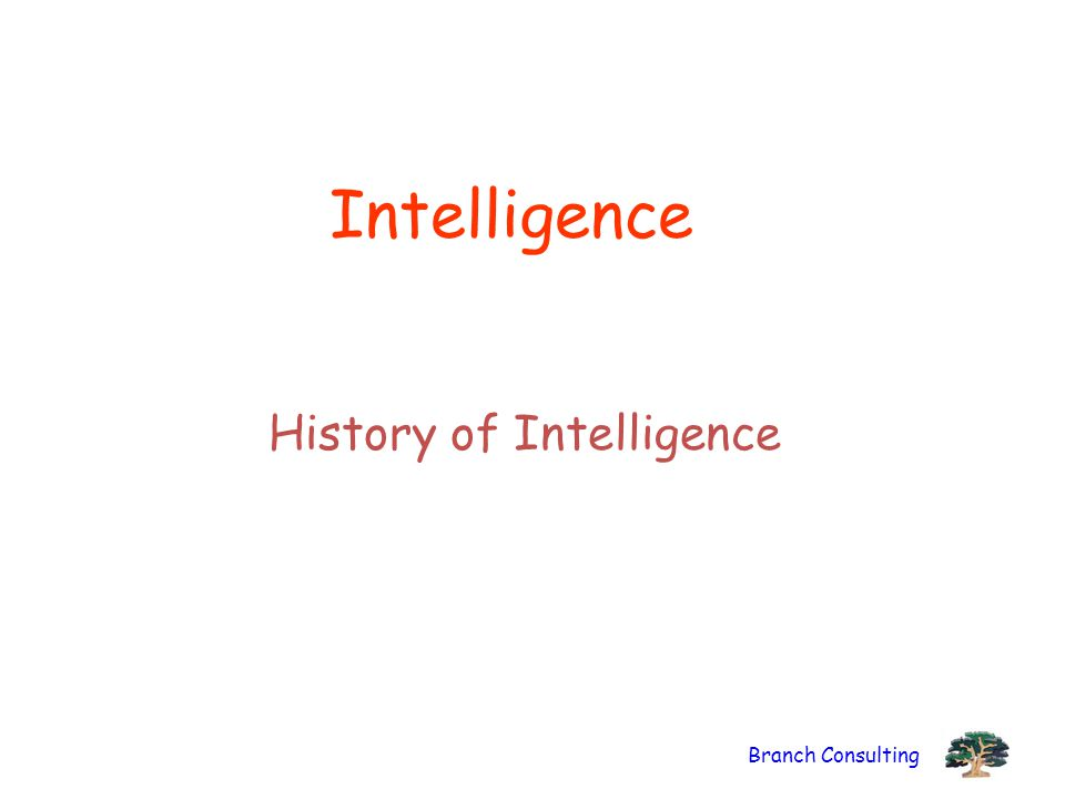 Branch Consulting Intelligence History of Intelligence