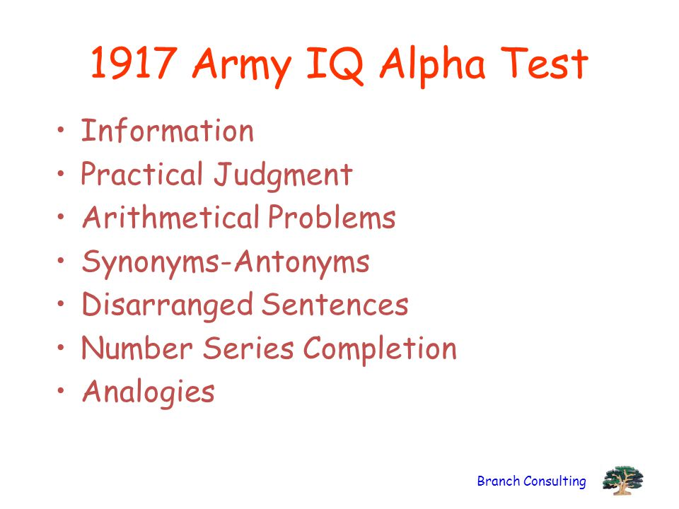 Branch Consulting 1917 Army IQ Alpha Test Information Practical Judgment Arithmetical Problems Synonyms-Antonyms Disarranged Sentences Number Series Completion Analogies