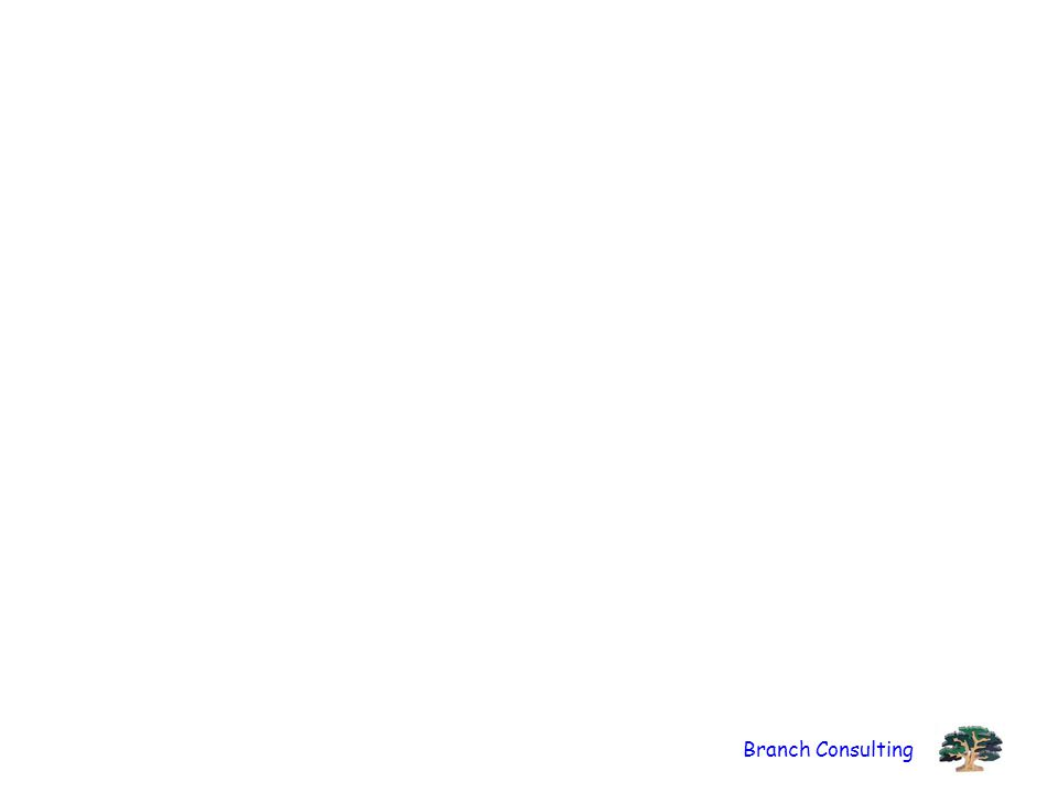 Branch Consulting