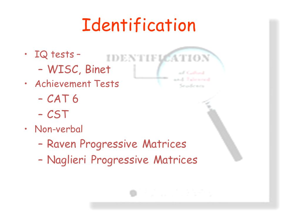 Branch Consulting Identification IQ tests – –WISC, Binet Achievement Tests –CAT 6 –CST Non-verbal –Raven Progressive Matrices –Naglieri Progressive Matrices